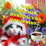 Осень открытки ноябрьский привет
