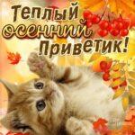 Мигающие с добрым пожеланием осень