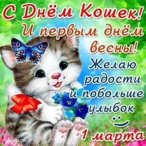 В картинках день кошек день весны