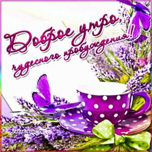 Открытка доброе утро. сказочно красивого утра, цветы, текст, красивая надпись с утром, со стихом про утро, мигающая, картинки про утро, утреннее пожелание, гиф утречко.