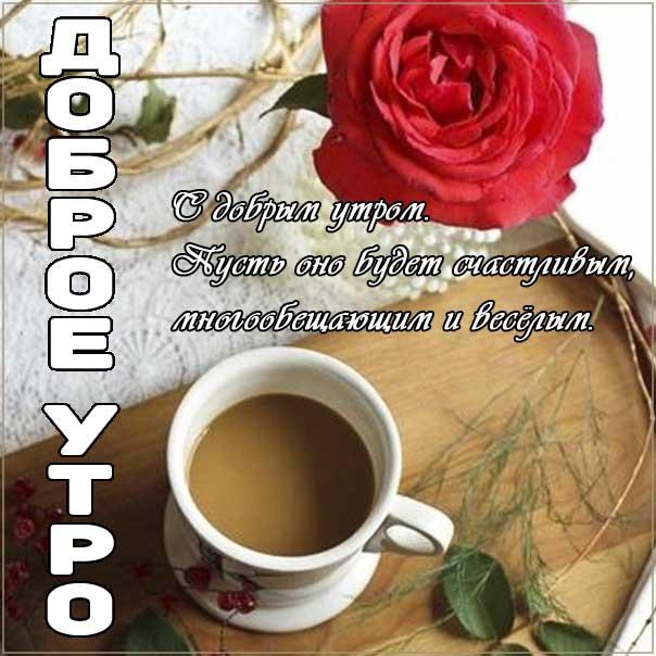 Доброе утро, замечательного утра, теплого утра, нежного утра, доброе утро чудесного солнечного дня, прекрасное утро, ласкового утра