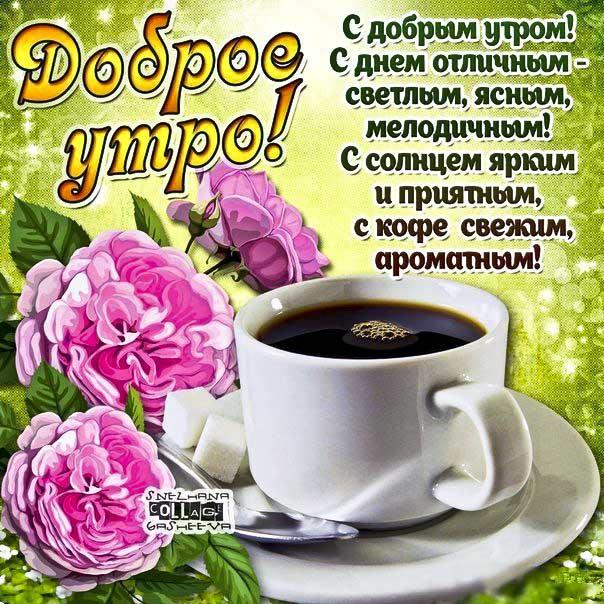 Доброе утро, позитивного утра, с добрым утром открытки, утро розы кофе, чудесного тебе утра, прекрасного утра, солнечного утра, чудесных эмоций, замечательного утра, теплого утра, нежного утра, доброе утро чудесного солнечного дня