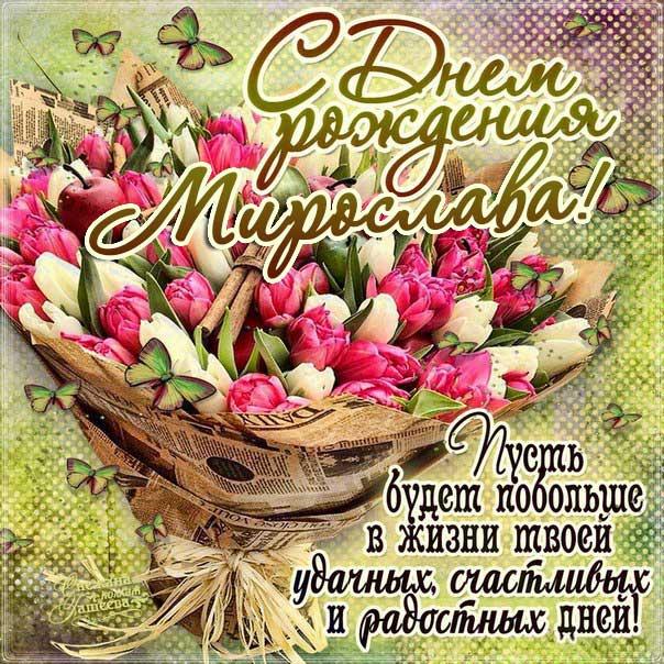 С днем рождения Мирослава картинки, Мирославе открытка с днем рождения, Мире день рождения, Мирославочка с днем рождения анимация, Мирочке именины картинки, поздравить Мирославу, для Мирославы с днем рождения, букет тюльпанов