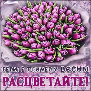 Комплимент расцветай хорошей, букет тюльпанов, картинка с надписью и цветами, девушке комплимент пожелание, женщине комплимент пожелание, красивое весеннее пожелание
