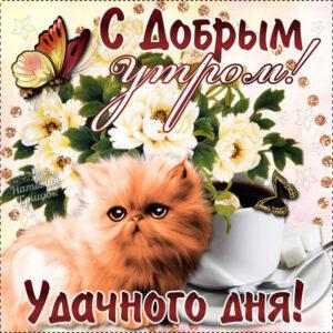 Пожелание на утро и чудесного дня