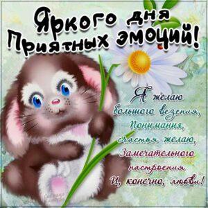 Открытка яркого дня приятных эмоций. Со словами, зайка, цветы, сияние, мультяшка, зайчик, мигающие, стихи, картинки пожелать.