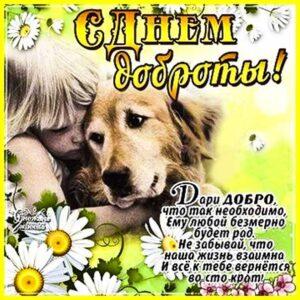 Картинка день доброты. С цветами доброты, скачать бесплатно тебе, добра тебе, с фразами с добротой день, доброе пожелание сказать в картинках, мерцающая открытка.