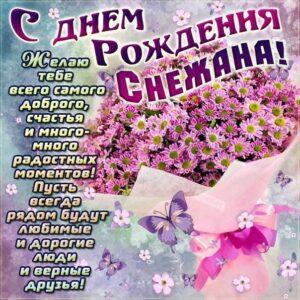 Снежаночка с Днем рождения картинка с поздравлением. Букет, ромашки, красивые цветы, надпись, стих, украшения, мигающая, открытка, мерцающая, с бликами.