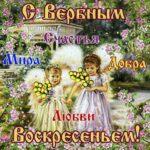 Вербное воскресенье gif открытки