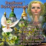 Верующим открытки вербное воскресенье