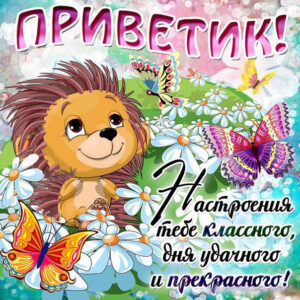 Привет открытки с надписью