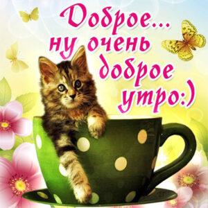 Доброе Утро открытки