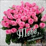 Розы открытки и картинки