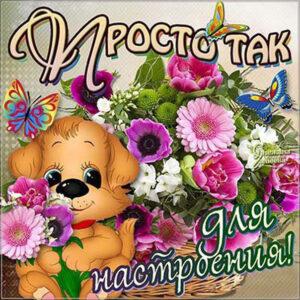 Собачка с цветами
